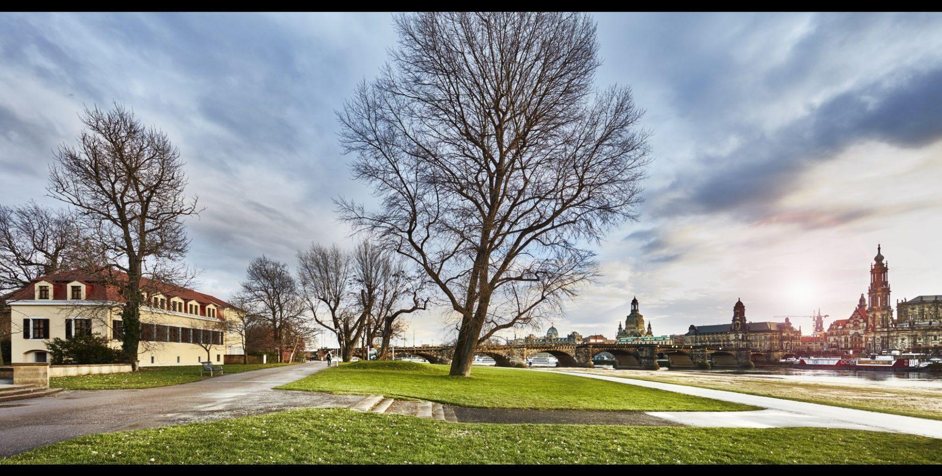 The Westin Bellevue Dresden- Garten mit Blick zur Dresdner Altstadt